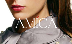 Interactive website design and development for the AMICA magazine