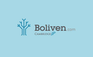Logo design and corporate identity for Boliven