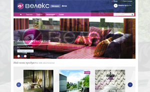 Online shop development for Velex